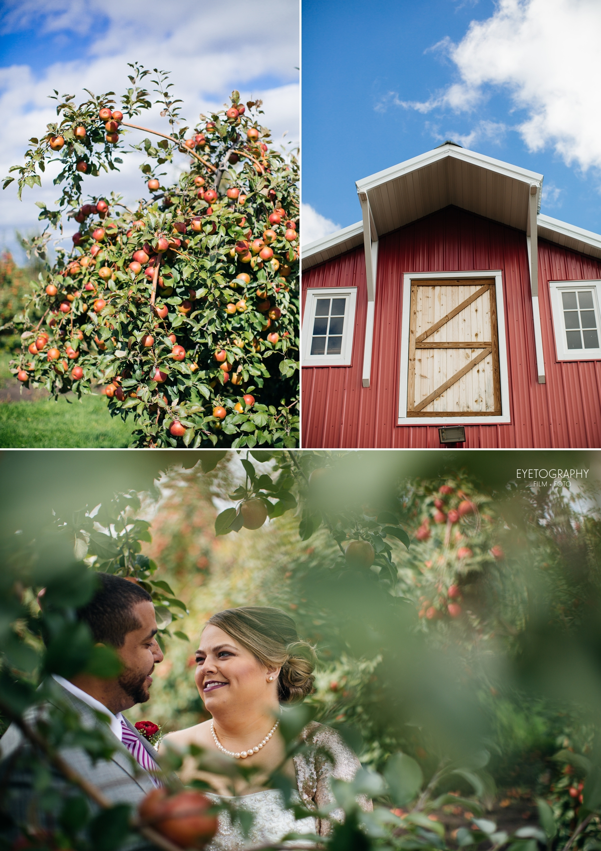Minnesota Apple Orchard Wedding | Emily + Nate | Eyetography Film + Foto 10