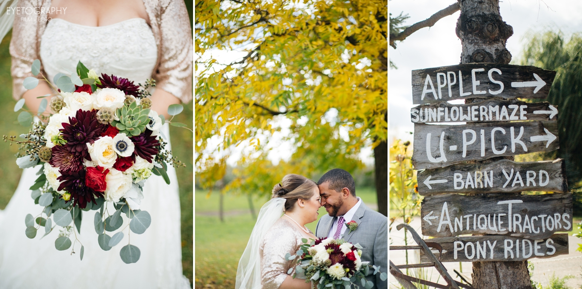 Minnesota Apple Orchard Wedding | Emily + Nate | Eyetography Film + Foto 9